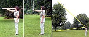 Pomiar wysokości drzewa